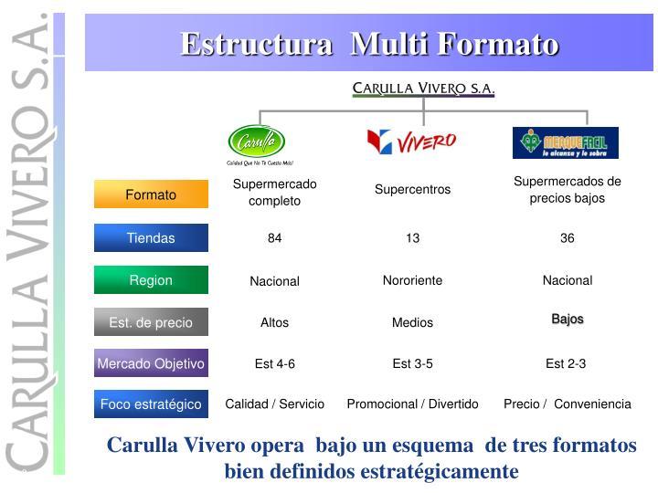 Estructura  Multi Formato