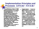 implementation principles and processes