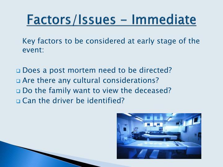 Factors/Issues - Immediate