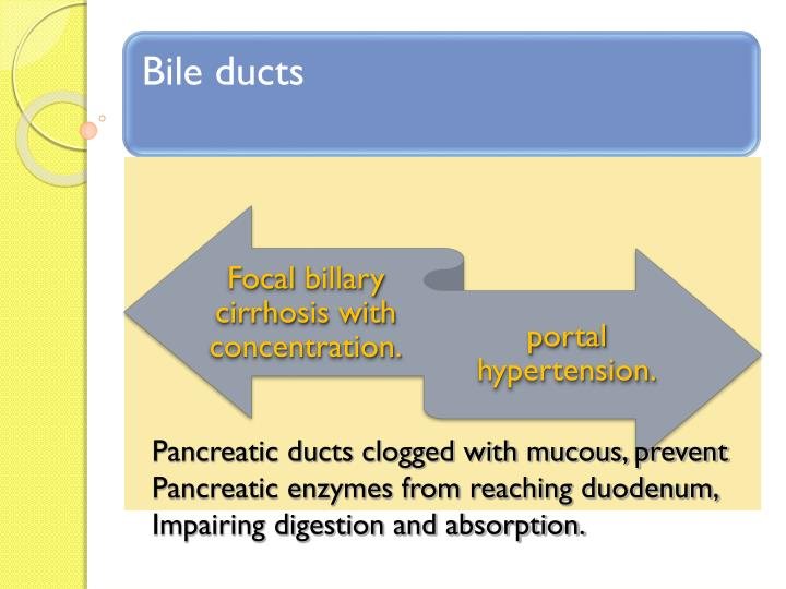 Pancreatic ducts clogged with mucous, prevent