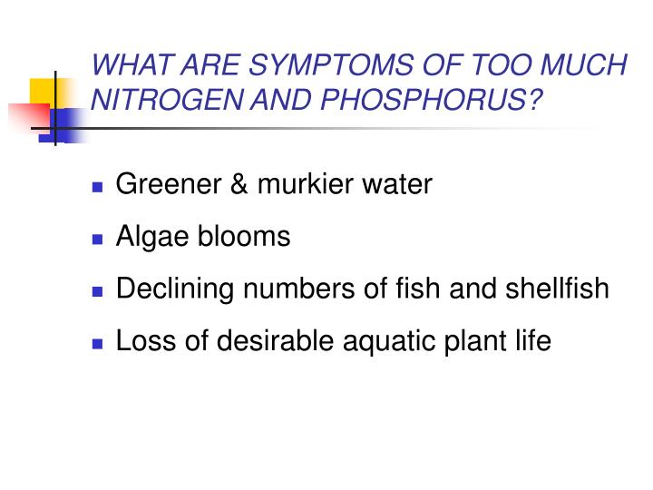 WHAT ARE SYMPTOMS OF TOO MUCH NITROGEN AND PHOSPHORUS?