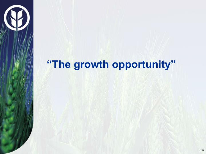 """The growth opportunity"""