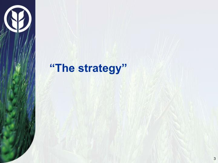 """The strategy"""