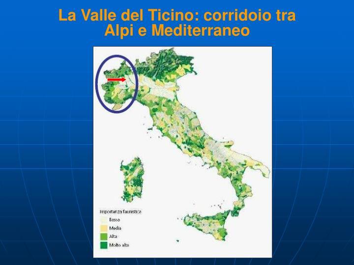 La Valle del Ticino: corridoio tra