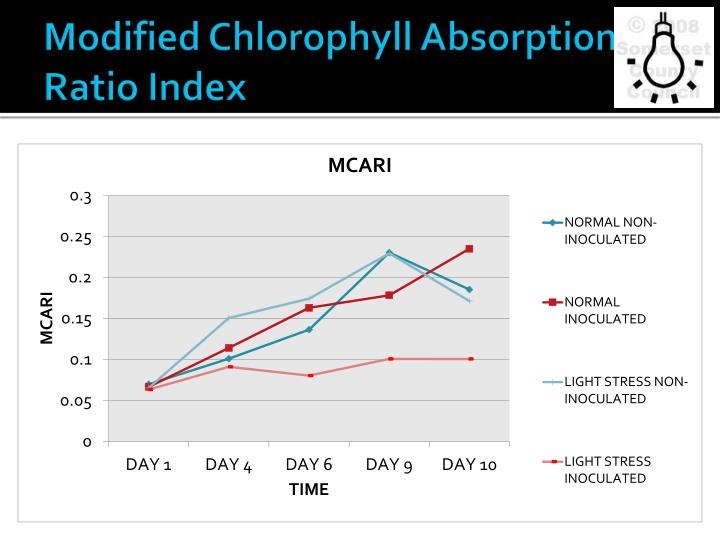 Modified Chlorophyll Absorption Ratio Index