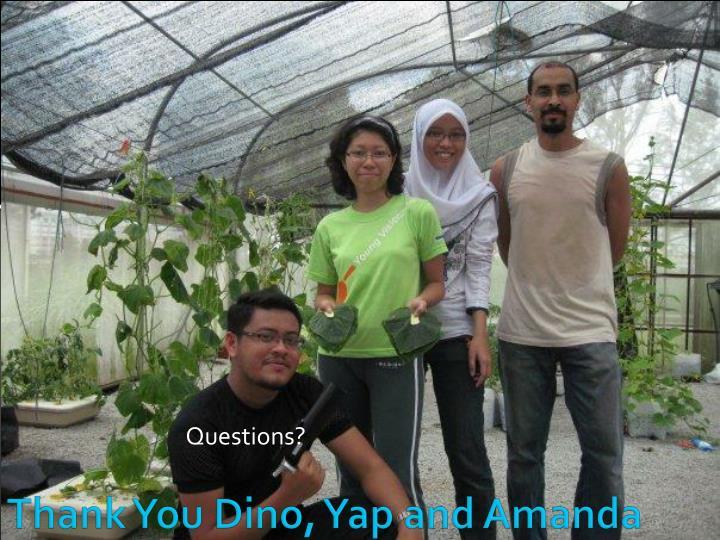 Thank You Dino, Yap and Amanda
