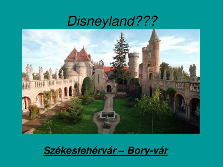 Disneyland???