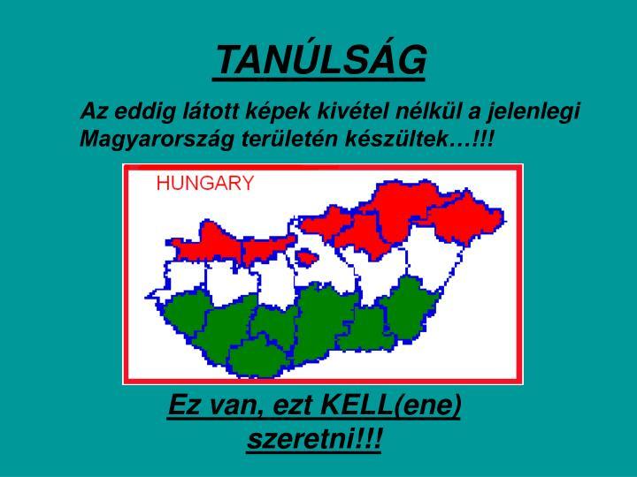 TANÚLSÁG