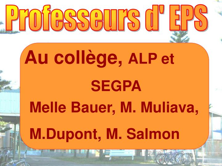 Professeurs d' EPS