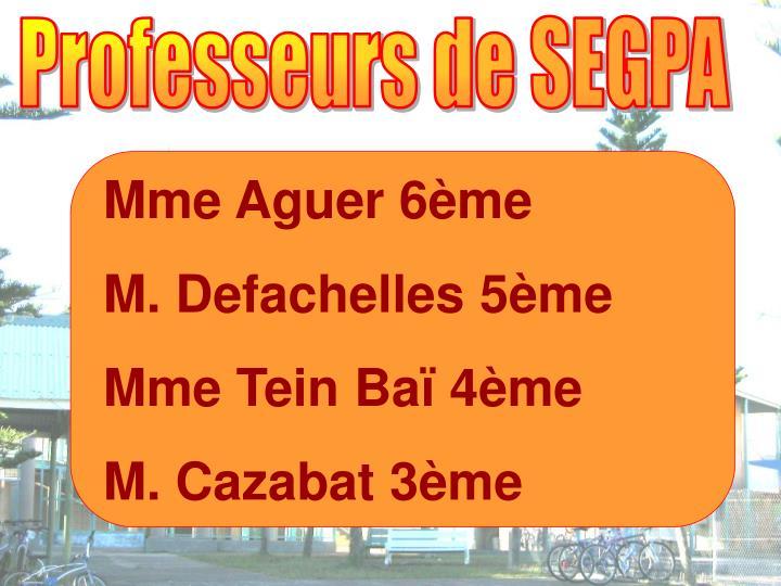 Professeurs de SEGPA
