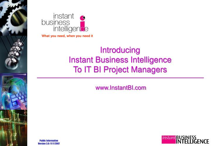 introducing instant business intelligence to it bi project managers n.