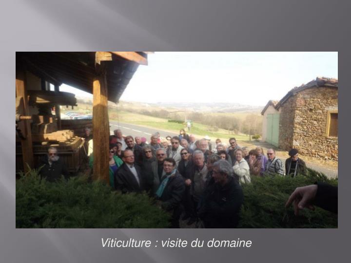 Viticulture :