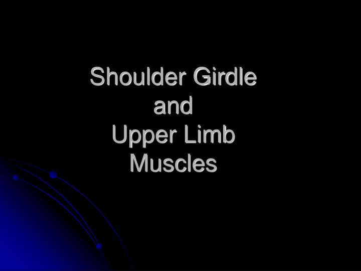 shoulder girdle and upper limb muscles n.