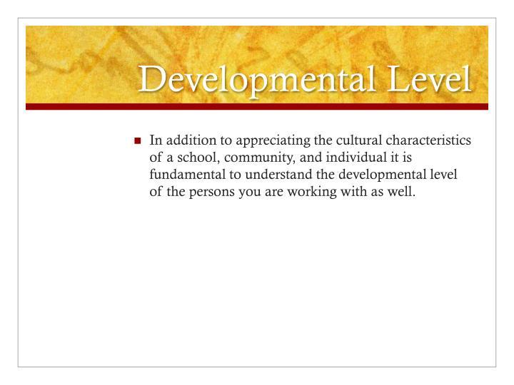 Developmental Level