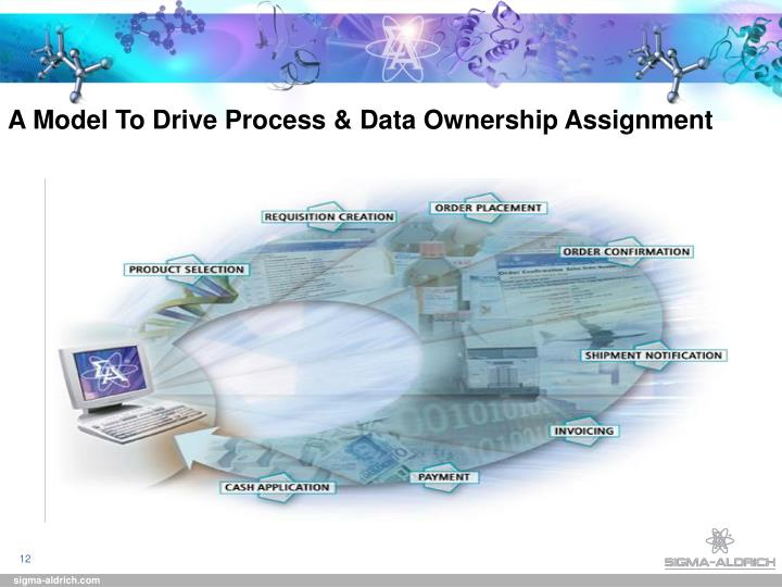 A Model To Drive Process & Data Ownership Assignment