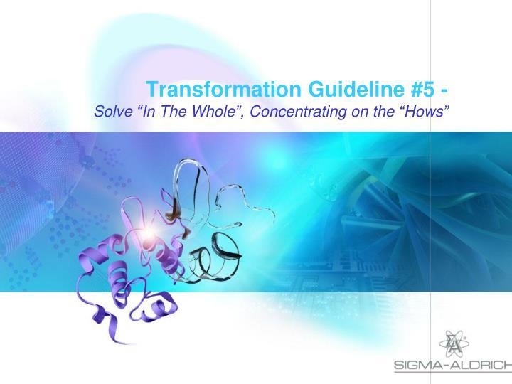 Transformation Guideline #5 -