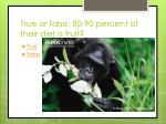 true or false 80 90 percent of their diet is fruit