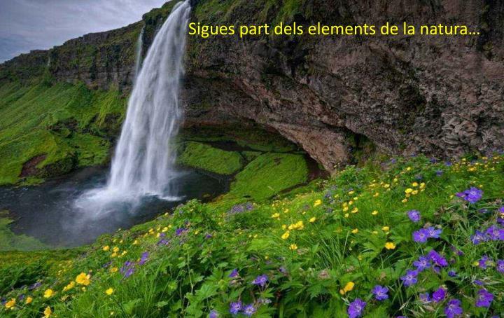 Sigues part dels elements de la natura…