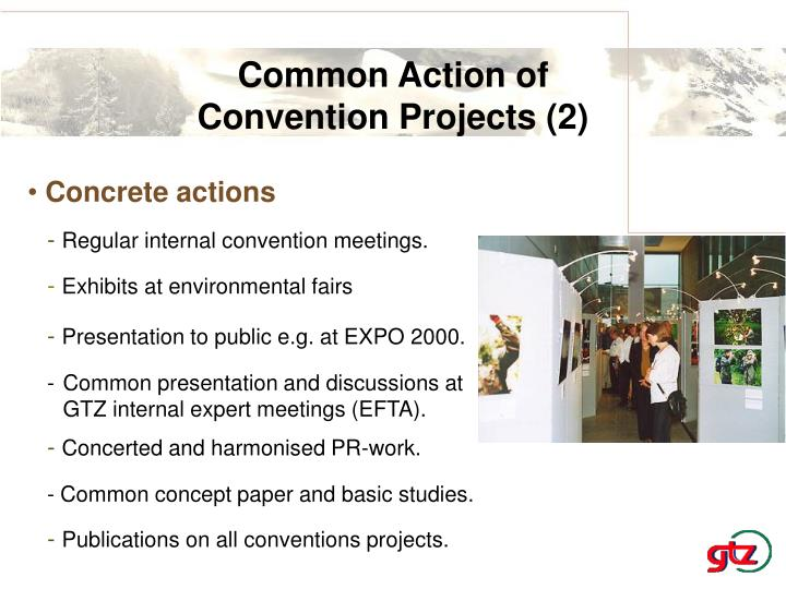 Common Action of
