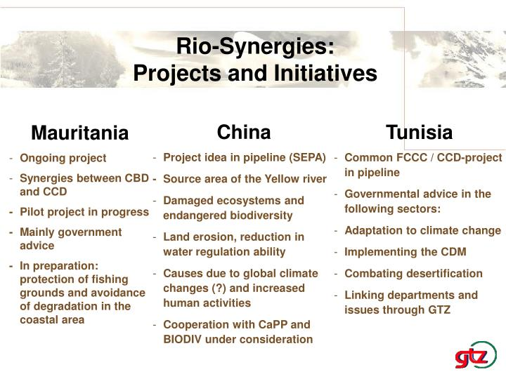 Rio-Synergies: