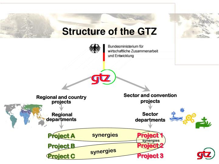 Structure of the GTZ