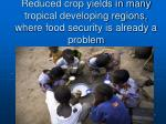 reduced crop yields in many tropical developing regions where food security is already a problem