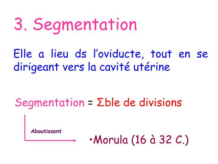 3. Segmentation