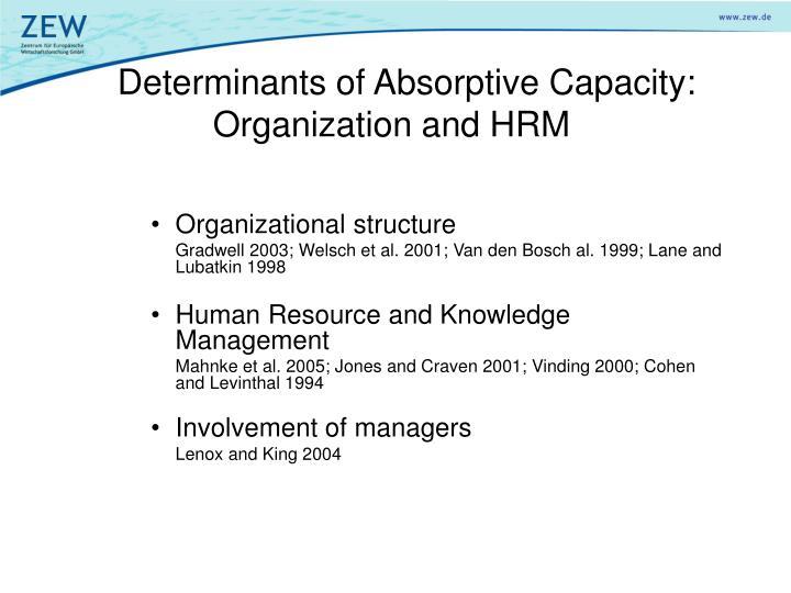 Determinants of Absorptive Capacity: