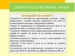 service escale roumanie amseaa13