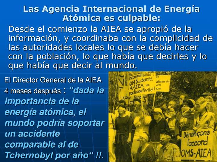 El Director General de la AIEA 4 meses después