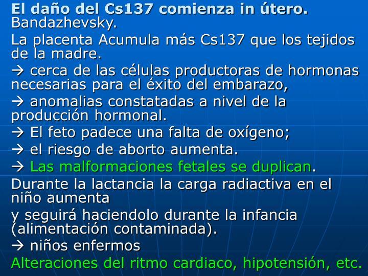 El daño del Cs137 comienza in útero.
