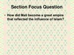 section focus question