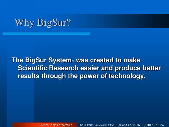 Why BigSur?