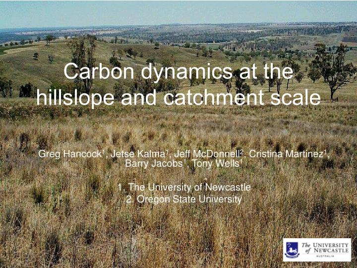 carbon dynamics at the hillslope and catchment scale n.