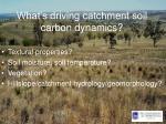 what s driving catchment soil carbon dynamics