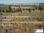 what s driving catchment soil carbon dynamics1