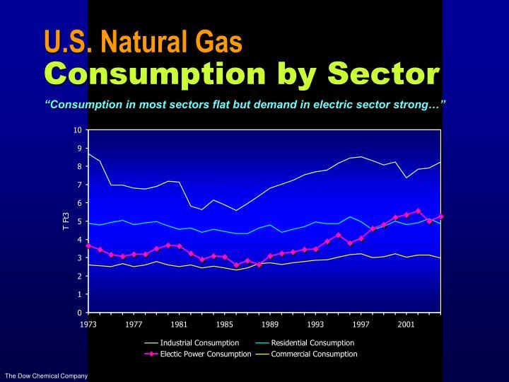 U.S. Natural Gas