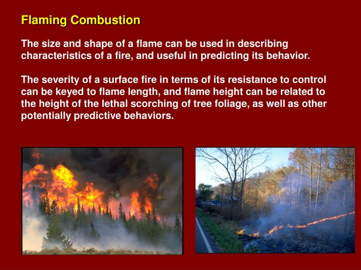 Flaming Combustion