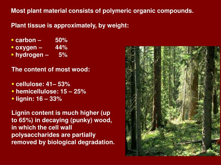 Most plant material consists of polymeric organic compounds.