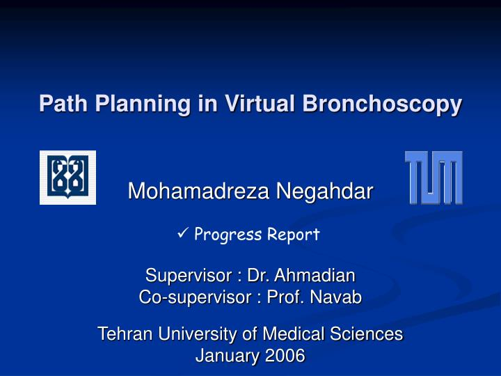 Path planning in virtual bronchoscopy