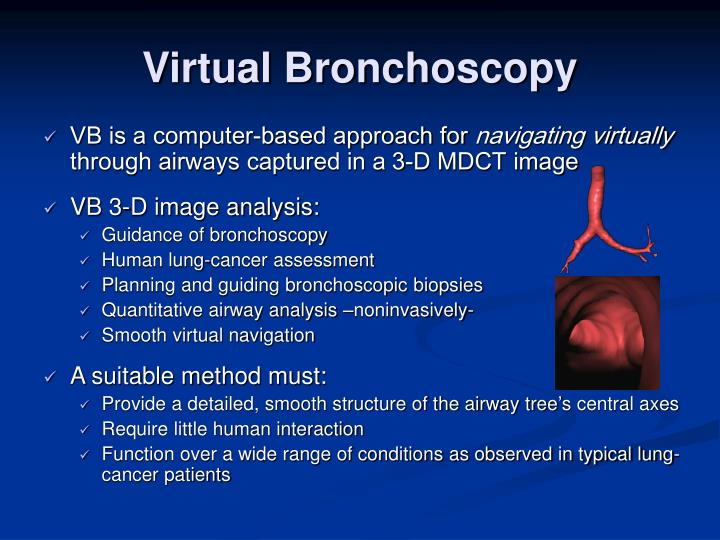 Virtual Bronchoscopy