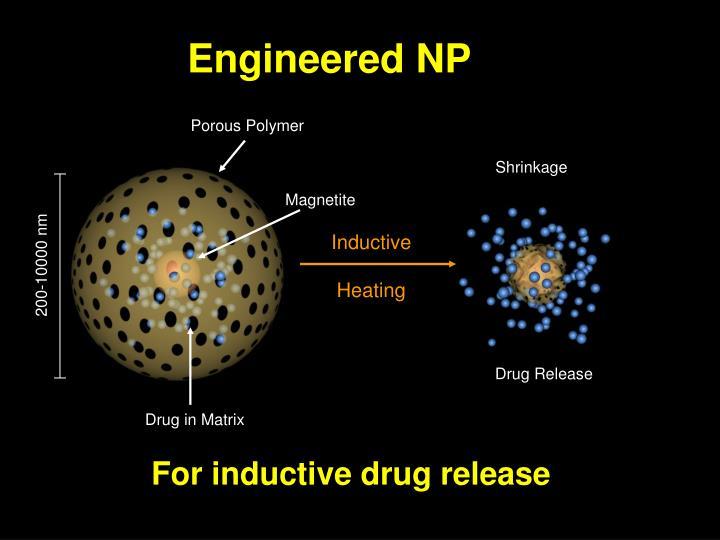 Engineered NP