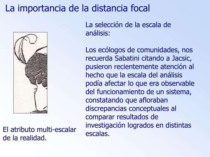 La importancia de la distancia focal