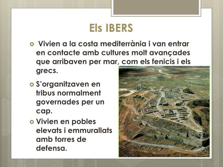 Els IBERS