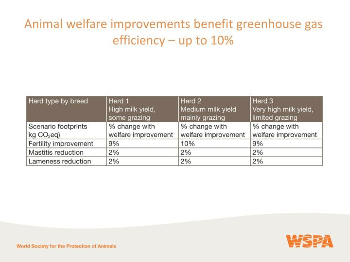 Animal welfare improvements benefit greenhouse gas efficiency – up to 10%