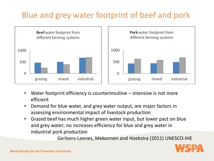 Blue and grey water footprint of beef and pork