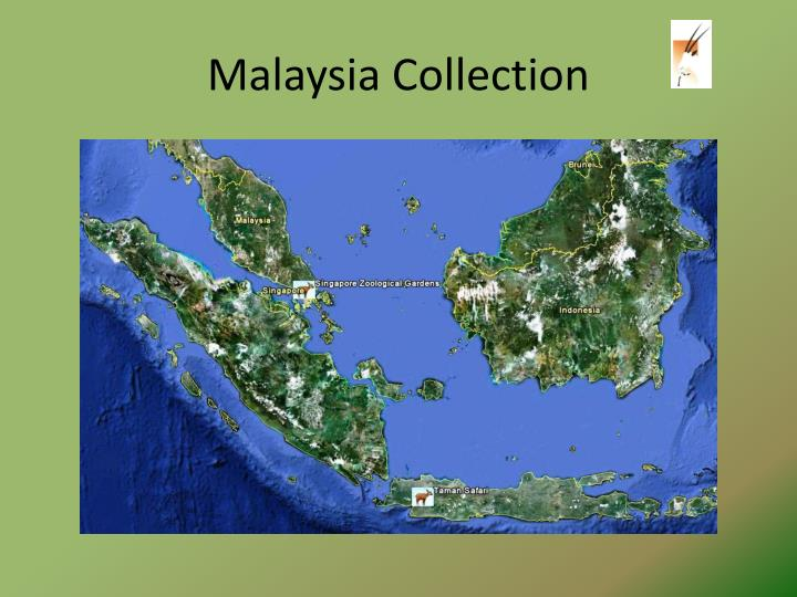 Malaysia Collection