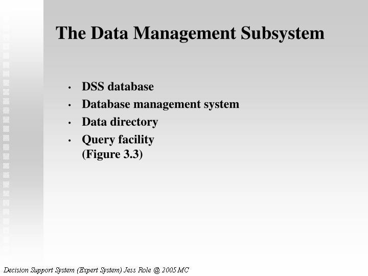 The Data Management Subsystem