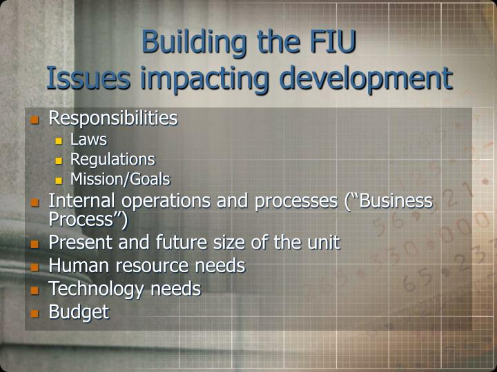 Building the fiu issues impacting development