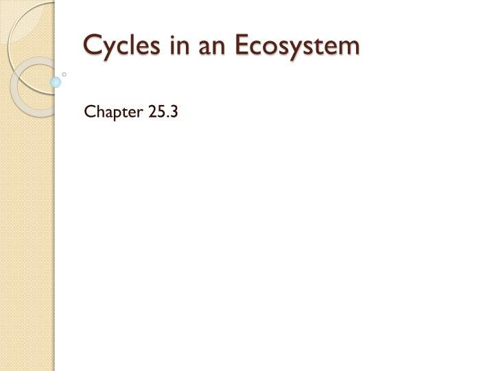 Cycles in an ecosystem